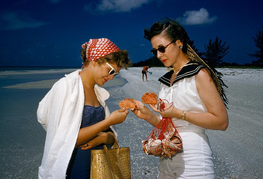 """Охотницы за раковинами рассматривают """"львиную лапу"""", ценную находку на острове Санибел во Флориде, 1959 год"""